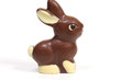 Chocolate bunny on white