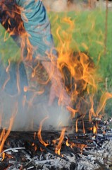 Kastanien aus dem Feuer holen
