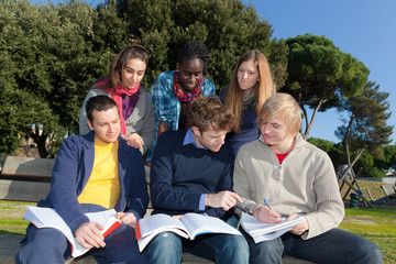 College Students Studying Together at Park