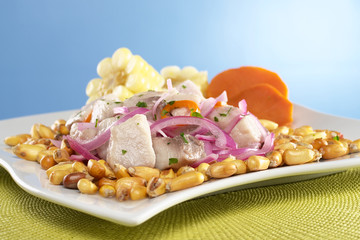 Peruvian ceviche out of raw mahi-mahi fish (Spanish: perico)