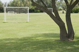 Goal in a metropark playing area poster