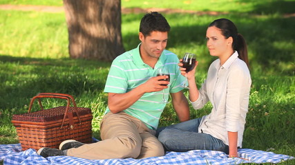 Couple drinking red wine on a picnic