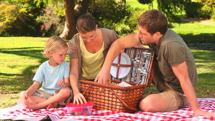Family preparing to have a picnic