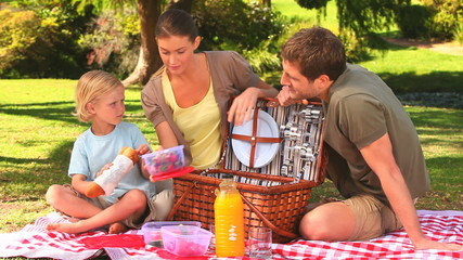 Cute family with picnic basket