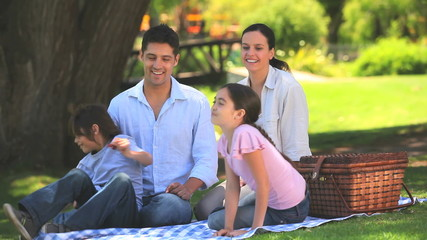 Cute family having a picnic