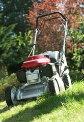 tondeuse à gazon pour tonte de la pelouse verte