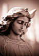 Weathered young angel in sepia tones