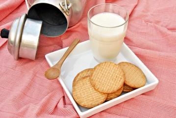 Bodegon de leche con galletas