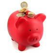 Sparschwein mit Münzen