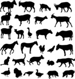 farm animals silhouettes - vector poster