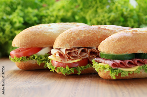 Canvas Snack Sandwiches