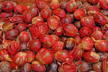 Freshly Harvested Nutmeg Fruit