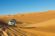 Sahara Desert Safari - 31551514