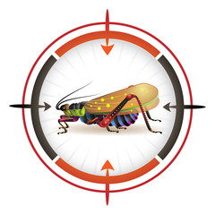 Sniper target with grasshopper