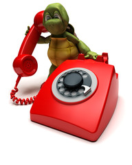 tortoise with a telephone