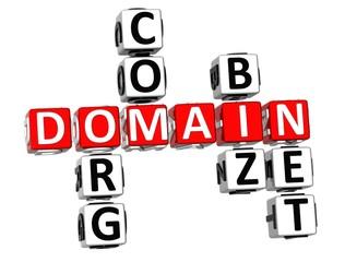 3D Domain Org Com Biz Net Crossword