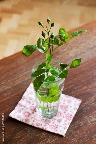 green rosebud in glass