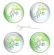 Organic Science glossy balls