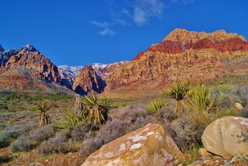Red Rock Canyon and Vakkeys