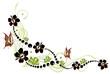 Hibiskus, hibiscus, Ranke, flora, Blumen, Blüten, bunt