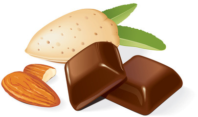 Chocolate pieces and almonds composition. Vector