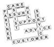 Customer partner