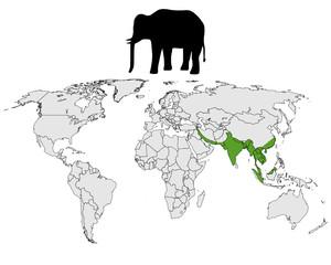 Asiatischer Elefant Verbreitung