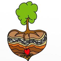 cuore d'albero