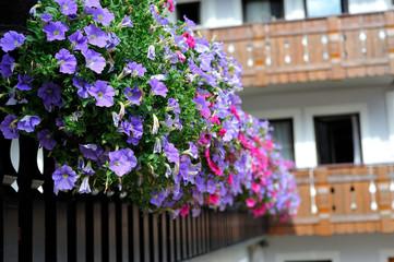 Ringhiera fiorita