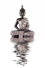 Bouddha et son reflet dans l'eau