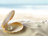 Shell with a pearl - 31650930