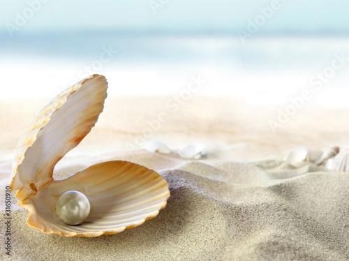 Muschel mit einer Perle