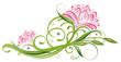 Lotus, Lotusblüte, Wellness, Seerose, Rose, Yoga, bunt