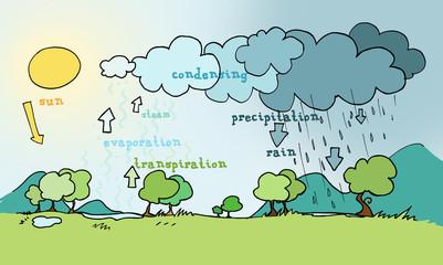 Schema esplicativo del ciclo dell'acqua