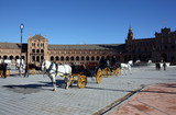 Sevilla, Horses and carriage in Plaza de Espagna