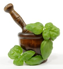 basil twigs and wooden mortar