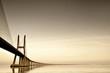 Bridge - 31665308