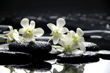 Fototapety Zen stones and white orchids with reflection