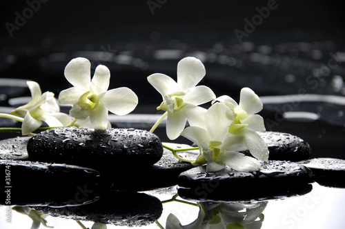 Zen stones and white orchids with reflection © Mee Ting