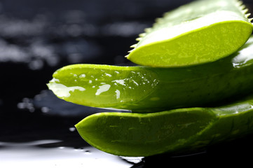 tranquil spa - stacked aloe vera slices