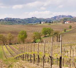 Italian town in Tuscany