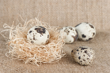 Easter eggs in natural colours on burlap