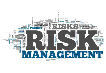 "Word Cloud ""Risk Management"""