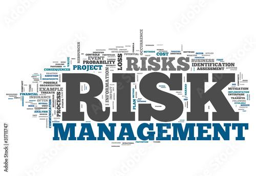 """Word Cloud """"Risk Management"""""""