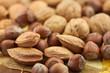 fruits secs d'automne : noix, noisettes, amandes