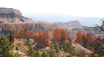 Hoodoos along Tower Bridge Trail in Bryce Canyon National Park