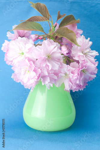 sakura flower in a vase and a card signed thank you on a blue ba