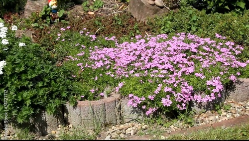 Im Garten, VIDEO FULL HD