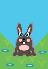 cartoon rabbit on isolated background