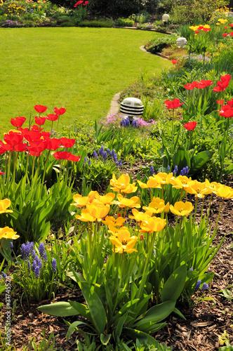 Garten mit Tulpen